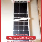 lampu pju solarcell all in one 30watt murah